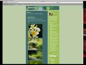 View of the Quacks of Life blog