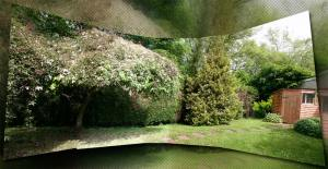Rough panoramic image of my garden.